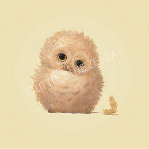 Illustrated Owl Print - children's pictures & paintings