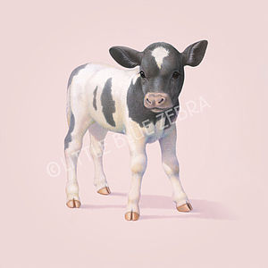Illustrated Cow Print - children's pictures & paintings