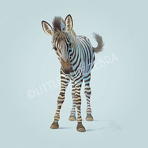 Illustrated Zebra Print - children's pictures & paintings