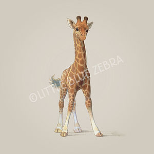 Illustrated Giraffe Print