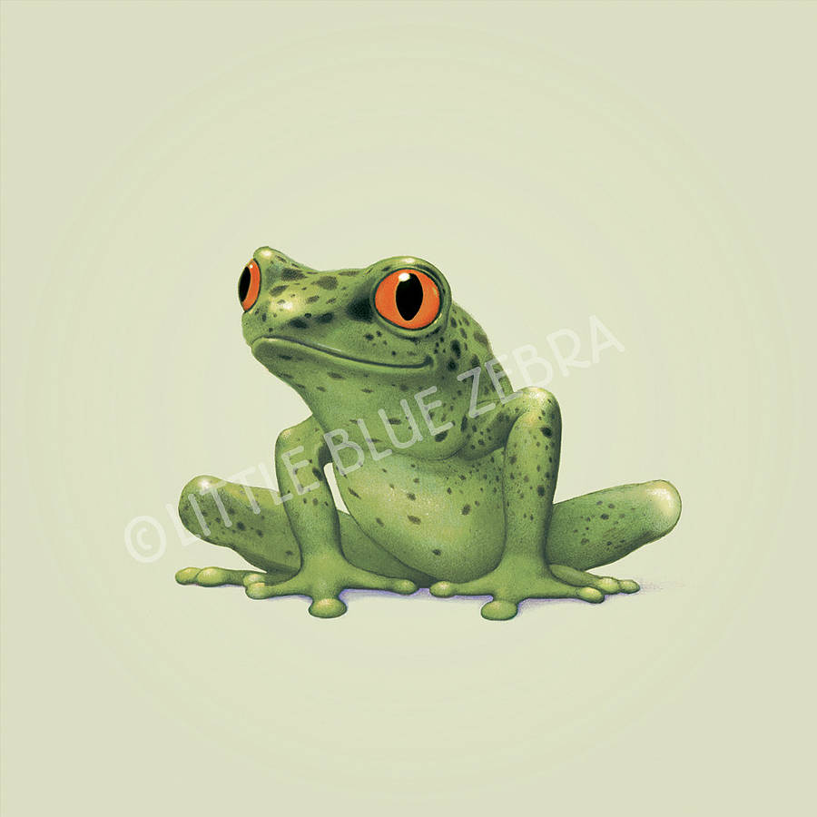Illustrated Frog Print By Little Blue Zebra