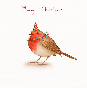 'Flash' Party Robin Christmas Card - cards