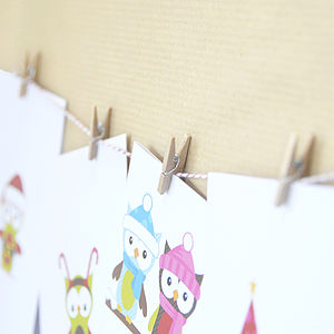 Christmas Card Peg And Twine Hanging Kit - card holders