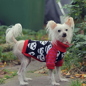 I Heart Skull Knitted Dog Jumper - pet clothes & accessories