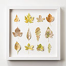 Vintage Map Leaves