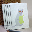 Little Cat Notebook