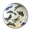 Moths Paperweight