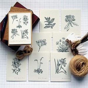 Set Of Eight Botanical Notelets
