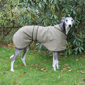 Greyhound Lurcher Dog Coat - pets