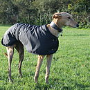 Greyhound Lurcher Dog Coat