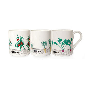 Seasonal Gardening Mug Set