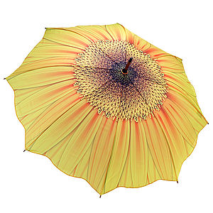 Sunflower Umbrella - parasols & windbreaks