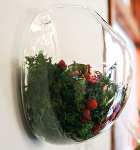 Glass Vase, Wall Dome - kitchen