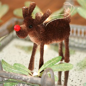 Brush' Rudolph' Reindeer