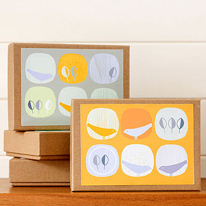 Set Of Eight Rhythmic Birds Cards Giftbox