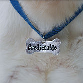Personalised Bone Shaped Dog Tag - pets