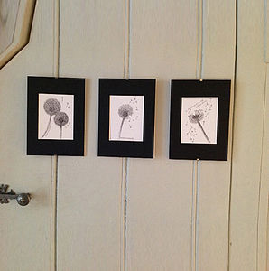 Set Of Three Dandelion Images