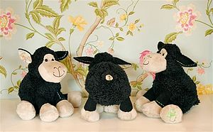Black Baby Colourful Lamb Teddy - soft toys & dolls