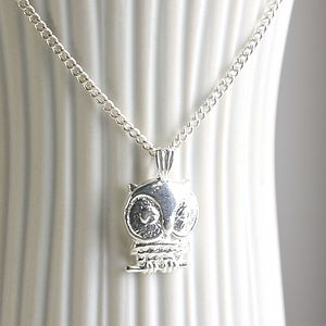 Sterling Silver Owl Charm Necklace - necklaces & pendants