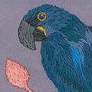 Macaws Cushion