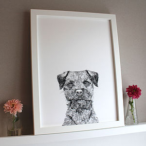 'Baxter The Border Terrier Dog' Print - pictures & prints for children