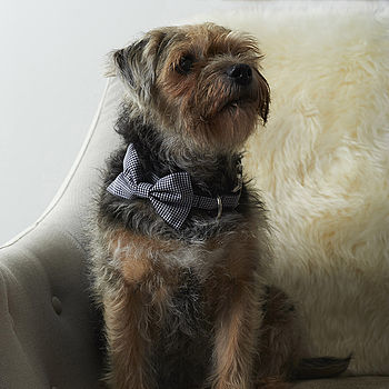 Tiny Checks Bow Tie Dog Collar