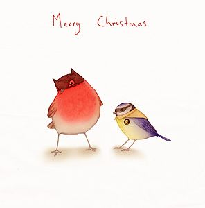 'Batman & Robin' Christmas Card - christmas cards