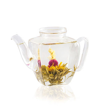 Taipan Glass Teapot