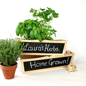 Chalkboard Planter Set Gift Boxed