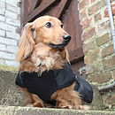 Waterproof Dachshund Underbelly Dog Coat