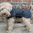 Waterproof Underbelly Dog Coat