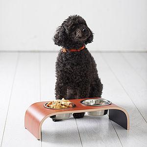 Designer Raised Pet Feeder - dogs