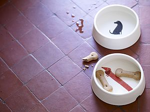 Dachshund Dog Bowl - dogs