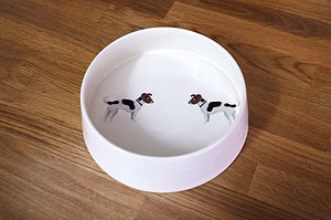 Jack Russell Dog Bowl - dogs