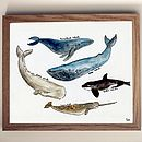 Deep Sea Whales Art Print