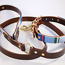 Deckchair stripe dog collar and lead, brown leather, brass fittings