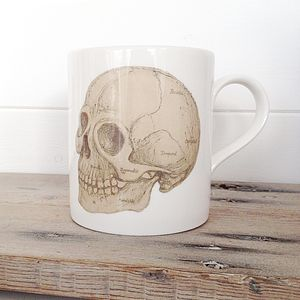 Anatomical Skull Illustration Bone China Mug - mugs