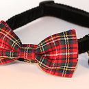 Hamish Tartan Bow Tie Dog Collar And Lead By Scrufts