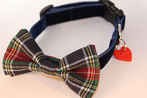 Dougal Tartan Bow Tie Dog Collar By Scrufts - pet collars