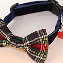 Dougal Tartan Bow Tie Dog Collar By Scrufts