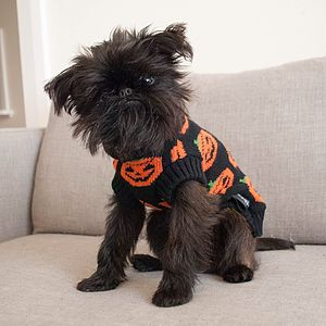 Halloween Pumpkin Knitted Dog Jumper - clothes