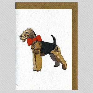 Illustrated Airedale Blank Card