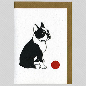 Illustrated Boston Terrier Blank Card - winter sale