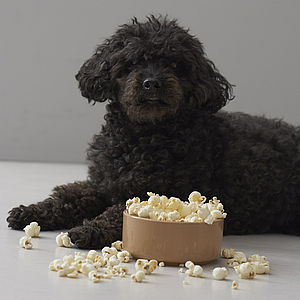 Popcorn For Dogs - gifts for your pet
