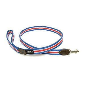 Wide Striped Cotton Webbing Lead