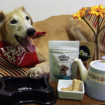 Breakfast In Bed For Your Dog