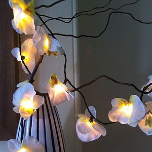'White Orchid' LED Fairy Lights - fairy lights & string lights