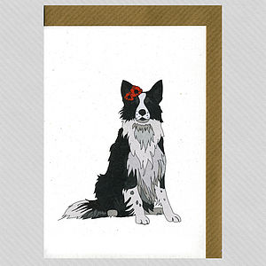 Illustrated Border Collie Blank Card