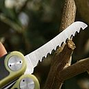 Green Secateurs