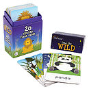 Baby Flashcards